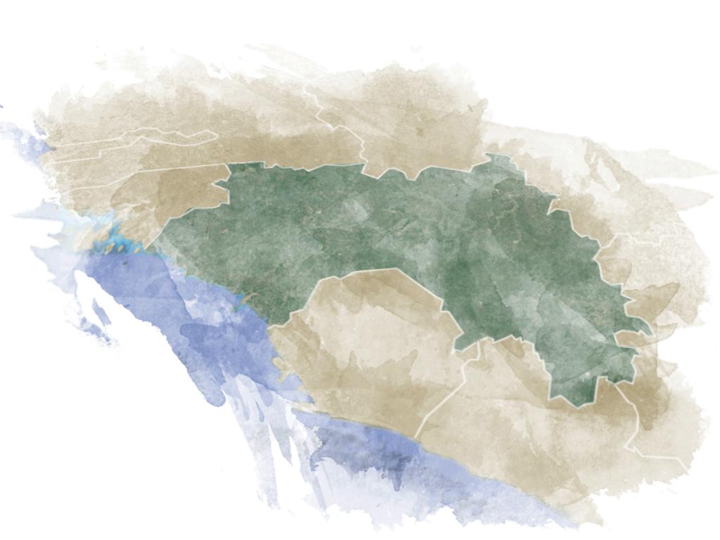 map_guinea_small